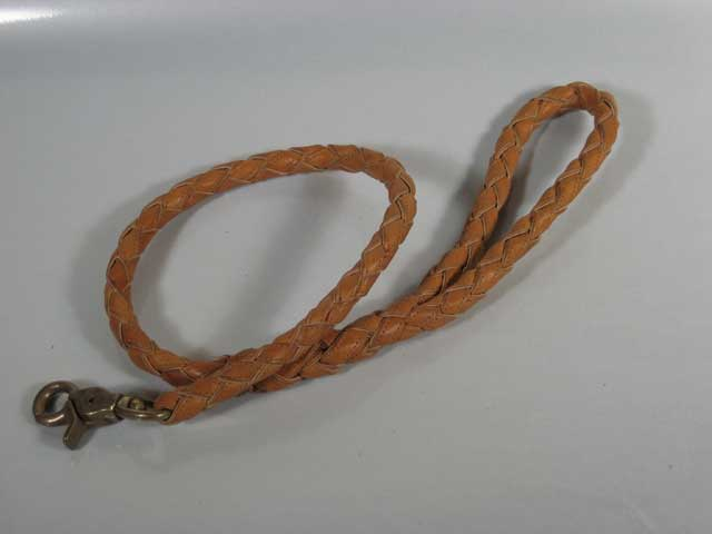 Braided Dog Leash