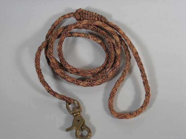 Braided Dog Leash 2
